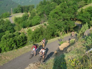 Biking in the Rhodopes