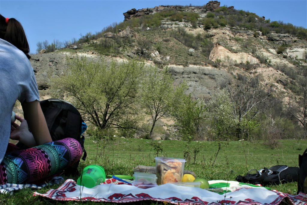 Пикник на ливадата