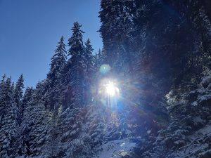 Хубавото на курорта Пампорово е, че има възможности не само за спускане със ски по пистите, но и за снежни разходки по маркирани маршрути.