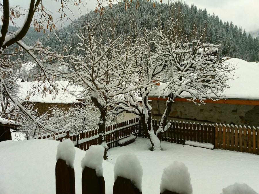 Зимна Широка лъка