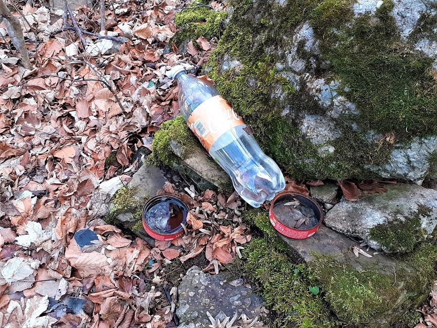Вода за мравките на Левочево